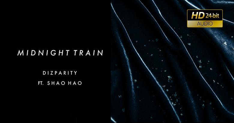 Dizparity - 深夜列車
