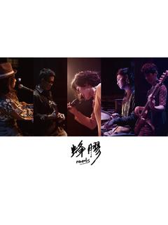 蜂膠樂團/T.B.A