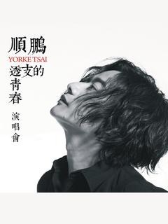城市旅人--順鵬YorkeTsai《透支的青春》台北演唱會