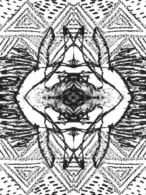 Flyinsnow 飛雪-首張個人專輯「通道」發片巡迴台中場